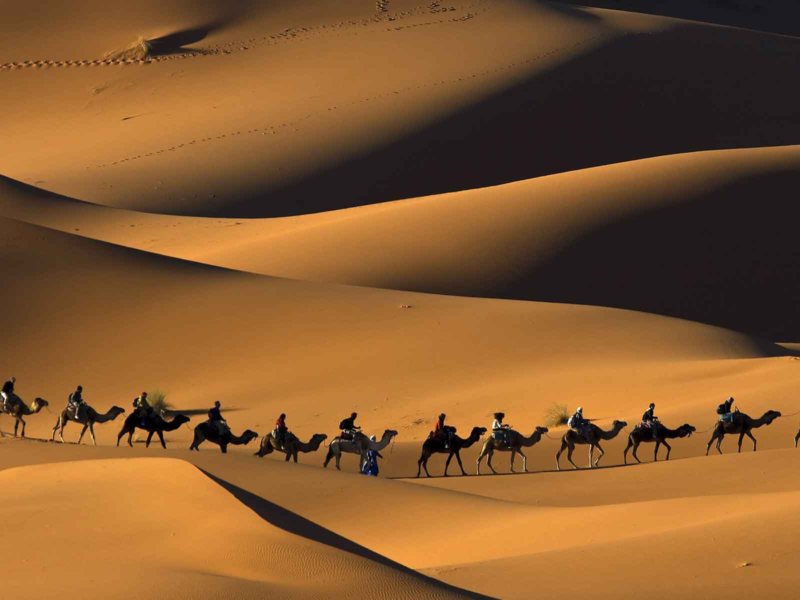 beautiful morocco desert